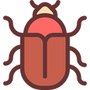 insect, Animals, beetle, Wild Life, Animal Kingdom SaddleBrown icon