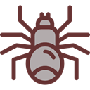 insect, spider, Animals, Wild Life, Arachnid, Animal Kingdom SaddleBrown icon