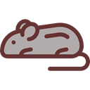 Mouse, Animals, rodent, Wild Life, Animal Kingdom Black icon
