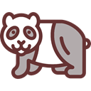 panda, Animals, Wild Life, Animal Kingdom Icon