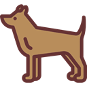 dog, pet, Animals, Animal Kingdom Icon