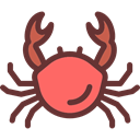 summer, Crab, Crabs, Summertime, food, Animals, Aquarium, Beach, Sea Life SaddleBrown icon
