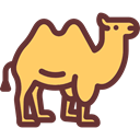 Animal, Camel, zoo, Animals, Wild Life, Animal Kingdom SandyBrown icon