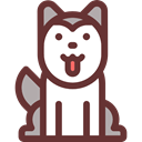 dog, pet, Animals, Animal Kingdom, Siberian Husky SaddleBrown icon