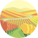 nature, landscape, scenery, Vineyard SandyBrown icon