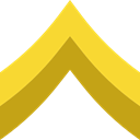 miscellaneous, Chevron, Military, Army Goldenrod icon