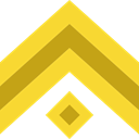 miscellaneous, Chevron, Military, Army Gold icon