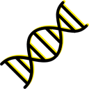 Deoxyribonucleic Acid, Dna Structure, Genetical, science, medical, education, Biology, dna Black icon