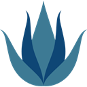 medical, plant, nature, Aloe Vera SteelBlue icon