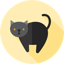 halloween, Black cat, scary, fear, Frightening, horror, Terror, Animals, spooky Moccasin icon