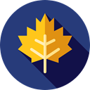Botanical, nature, halloween, garden, maple leaf, plant, Leaf DarkSlateBlue icon