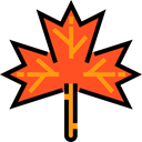plant, Leaf, nature, garden, maple leaf, Botanical Black icon