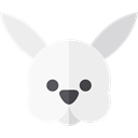 Bunny, zoo, Animals, rabbit, mammal, Wild Life, Animal Kingdom WhiteSmoke icon