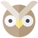 bird, hunter, owl, Animals RosyBrown icon