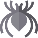 insect, spider, Animals, Arachnid, Animal Kingdom Gray icon
