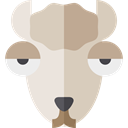Animal, zoo, Animals, Llama, Wild Life, Animal Kingdom LightGray icon