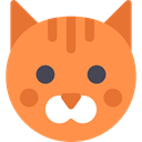 Animals, mammal, Breed, Cat, pet Coral icon