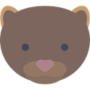 Animal, zoo, Animals, mammal, wild, wildlife, Mink DimGray icon