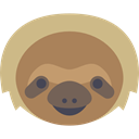 Animal, America, zoo, Animals, mammal, wild, wildlife, sloth Peru icon