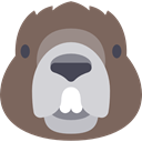 wild, wildlife, Beaver, Animal, zoo, Animals, mammal DimGray icon