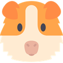 Animals, Animal, pet, wildlife, Guinea Pig, mammal, wild, rodent BlanchedAlmond icon