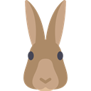 Face, Animal, head, Bunny, Animals, rabbit, Frontal View Black icon