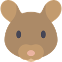 Mouse, Animals, rodent, Wild Life, Animal Kingdom RosyBrown icon
