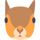 squirrel, mammal, wildlife, Animal Kingdom, zoo, Animals Peru icon