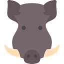 Animal, Animals, mammal, wild, wildlife, Savage, Boar DimGray icon