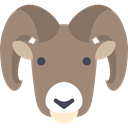 Animal, goat, zoo, Animals, Wild Life, Animal Kingdom Gray icon