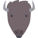 wildlife, Animals, mammal, wild, bison, Animal, America DimGray icon