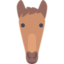 Animals, equine, mammal, horse Black icon