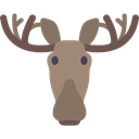 wild, wildlife, America, Animals, Moose, mammal, Animal Black icon