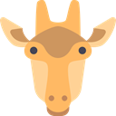 Animal, Africa, zoo, Animals, Giraffe, mammal, wild, wildlife SandyBrown icon