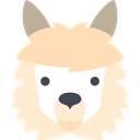 Wild Life, Animal Kingdom, Animal, zoo, Animals, Llama BlanchedAlmond icon
