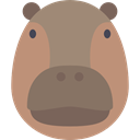 zoo, Animals, hippopotamus, wildlife, Animal Kingdom Gray icon