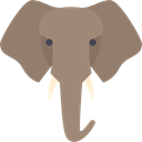 elephant, zoo, Animals, Wild Life, Animal Kingdom Gray icon