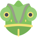 wild, reptile, wildlife, Animal, Animals, Chameleon DarkSeaGreen icon