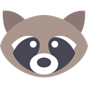 mammal, wild, wildlife, raccoon, Animal, America, Animals RosyBrown icon