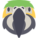 Animal, America, bird, parrot, Animals, wildlife, pet Icon