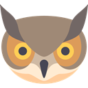 Animals, wild, wildlife, Animal, bird, owl, Pray Gray icon