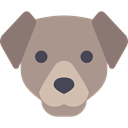 dog, pet, Animals, mammal, Animal Kingdom RosyBrown icon
