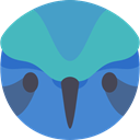 Animal, Colibri, bird, Animals, wild, wildlife SteelBlue icon