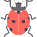 Animal, insect, Animals, ladybug, wild, wildlife Tomato icon