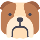 Animal, dog, pet, Animals, Bulldog, mammal, domestic Peru icon