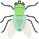 fly, Animals, Animal Kingdom, insect Black icon