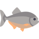 wild, dangerous, wildlife, Aquatic, Animal, fish, Animals, piranha Black icon