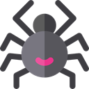 Animal Kingdom, insect, spider, Animals, Arachnid DarkSlateGray icon
