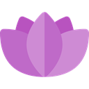 Flower, nature, oriental, sports, Yoga, lotus, meditation, Chakra, hinduism, Botanical MediumOrchid icon