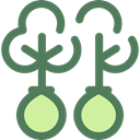 trees, Ecologism, Ecology And Environment, Reforestation, nature, Forest, woods, ecology DimGray icon